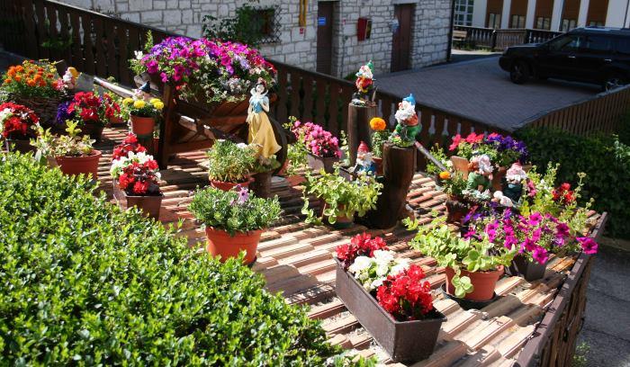 фото крыш Фолгарии с цветами