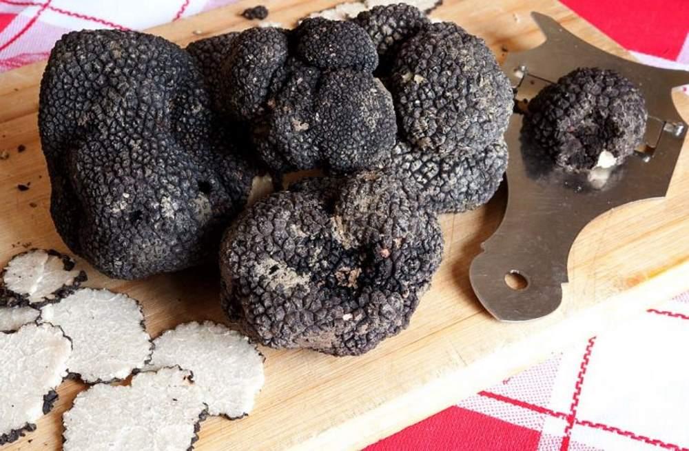 фото Черного трюфеля